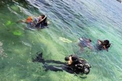 Penelitian Bioprospeksi Dosen dan Mahasiswa Fakultas Biologi di Pulau Seribu (5)