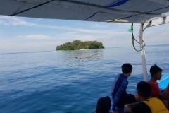 Penelitian Bioprospeksi Dosen dan Mahasiswa Fakultas Biologi di Pulau Seribu (8)