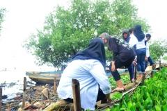 Saat mengambil sampah di hutan mangrove 1jpg