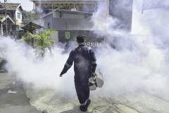 Proses pengasapan fogging di area pusat laboratorium bambu kuning pada Minggu (26/7).
