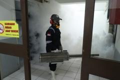 Pengasapan fogging diarea basement