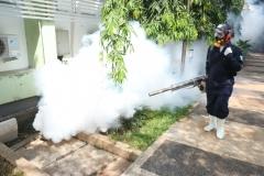 Universitas Nasional melakukan pencegahan penyakit demam berdarah dengue dengan pengasapan fogging di area kampus pada Minggu (26/7).