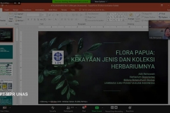 Presentasi materi oleh Kepala Herbarium Bogoriense, Pusat Penelitian Biologi, LIPI Dr. Atik Retnowati, S.P., M.Sc. dalam webinar flora papua yang diselenggarakan Lembaga Penelitian dan Pengabdian Kepada Masyarakat (LPPM) Universitas Nasional pada Rabu, (14/10) di Jakarta.