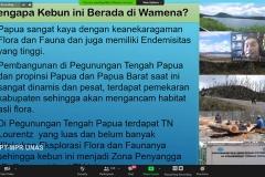 Presentasi materi oleh Peneliti Pengelola Kebun Raya Biologi Wamena; Pusat Penelitian Biologi, LIPI Drs. Albertus H. Wawo dalam webinar flora papua yang diselenggarakan Lembaga Penelitian dan Pengabdian Kepada Masyarakat (LPPM) Universitas Nasional pada Rabu, (14/10) di Jakarta.