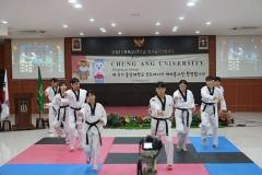 penampilan taekwondo dari mahasiswa Chung Ang University