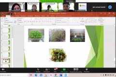 PKM-Dosen-Pertanian-UNAS-Dorong-Masyarakat-Kota-Untuk-Mulai-Urban-Farming