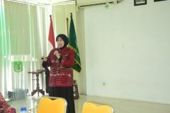 Prof. Dr. Ernawati Sinaga M.S. Apt