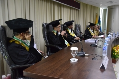 (kiri-kanan) Prof. Dr. Rusafi Kantaprawira, S.H, Prof. Dr. Maswadi Rauf, M.A, Prof. Dr. Nazarudin Syamsudin, Prof. Dr. Eko Sugiyanto, M.Si, Dr. TB. Massa Djafar, Dr. Mohammad Noer, M.A.sedang melakukan pengujian terhadap Any Hindrianty, di Jakarta (21/3).