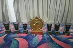 Piala Juara 3 yang diraih  tim peradilan semu fakultas hukum unas pada perlombaan mood court tingkat nasional di universitas lampung