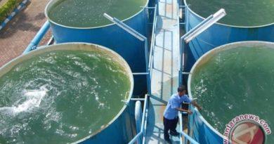 Mangkrak 40 tahun, Proyek Air Minum Umbulan Dimulai