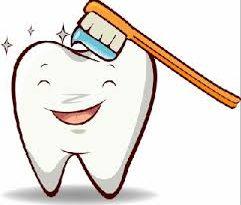 Tips Memelihara Agar Gigi  Tetap Sehat dan Kuat