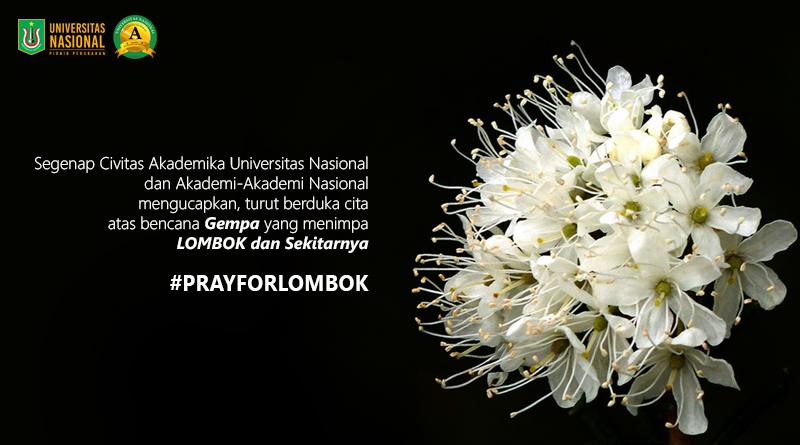 Turut Berduka Cita Untuk Saudara Kita di Lombok dan Sekitarnya #PrayForLombok