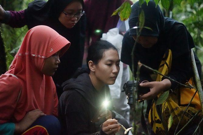 Penelitian mengenai jamur yang terindikasi menjadi bahan obat oleh dosen dan mahasiswa fakultas biologi, di Taman Nasional Gunung Halimun Salak, Jumat (19/4)